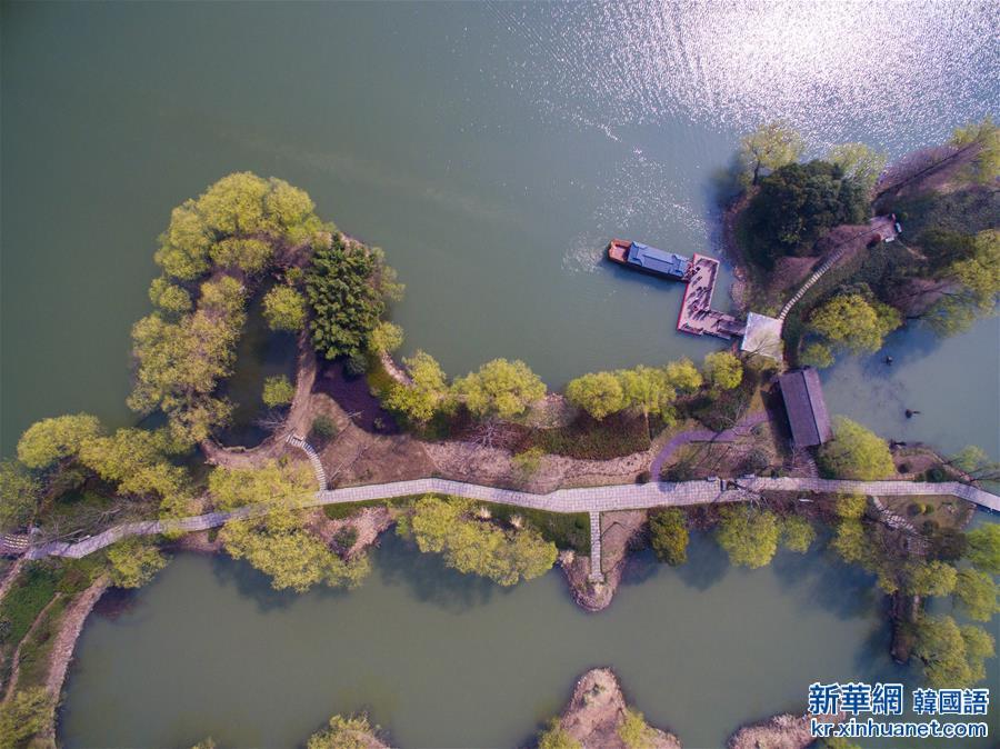 (美麗中國)(3)太湖濕地公園春意濃