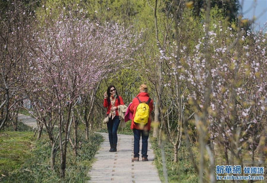 (美麗中國)(7)太湖濕地公園春意濃