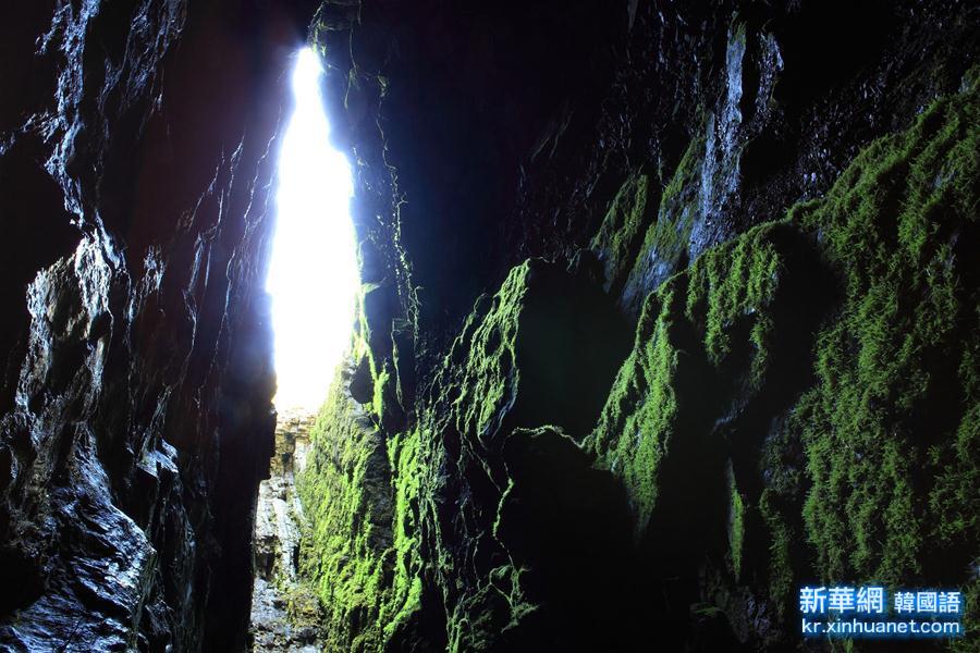 (國際)(2)世界遺産大會把中國湖北神農架列入世界遺産名錄