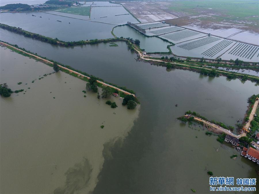 (抗洪救災)(2)湖北黃梅縣考田河堤出現潰口 數千人緊急轉移
