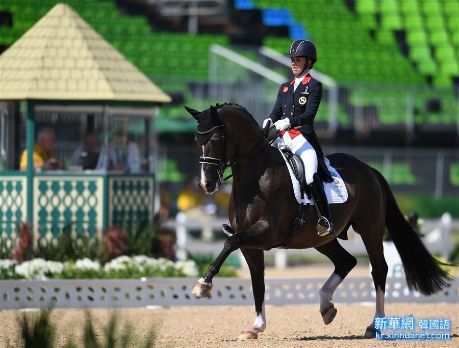 (裏約奧運會)(3)馬術——英國選手獲得個人盛裝舞步自由演繹大獎賽冠軍