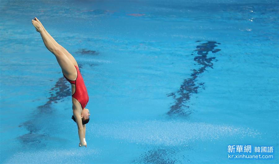 (裏約奧運會)(3)跳水——女子十米跳臺:中國選手包攬金銀牌