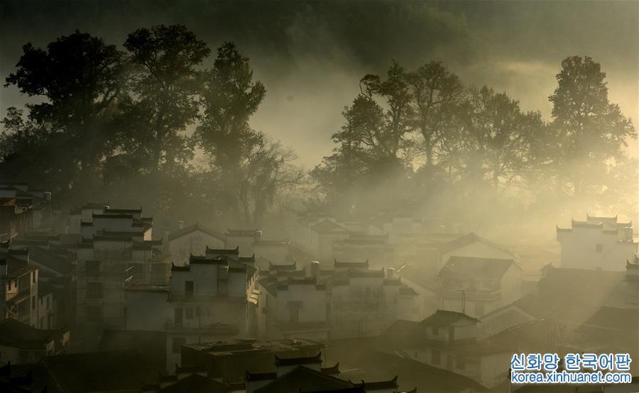 #(生態)(1)江西婺源:晨霧繚繞美如畫