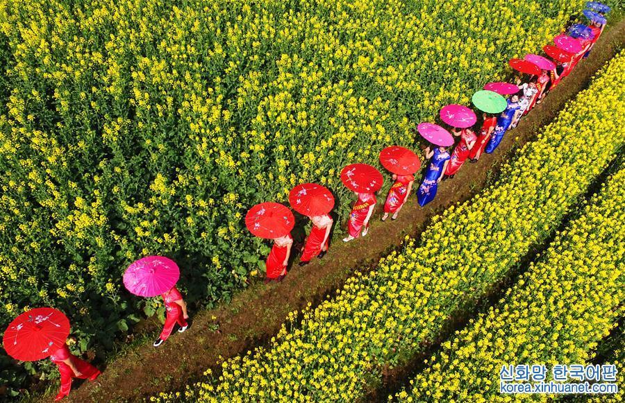 #(環境)(1)瞰春
