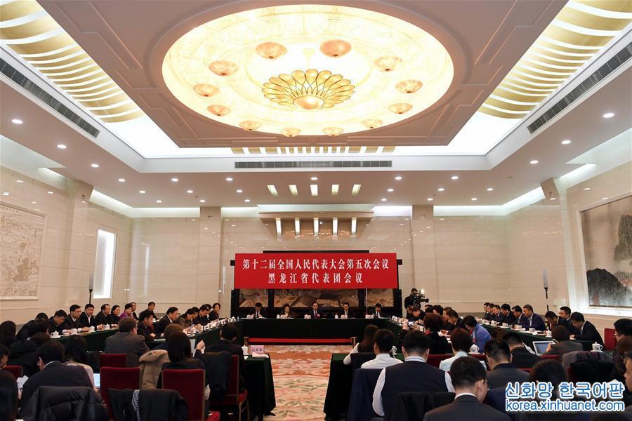 (兩會)黑龍江代表團小組會議向媒體開放