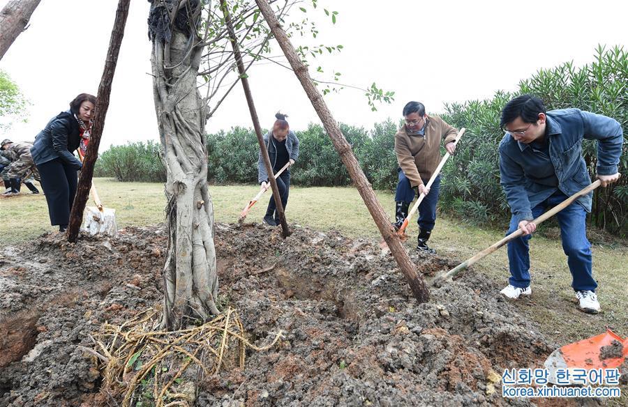 (社會)(3)植樹節裏植樹忙