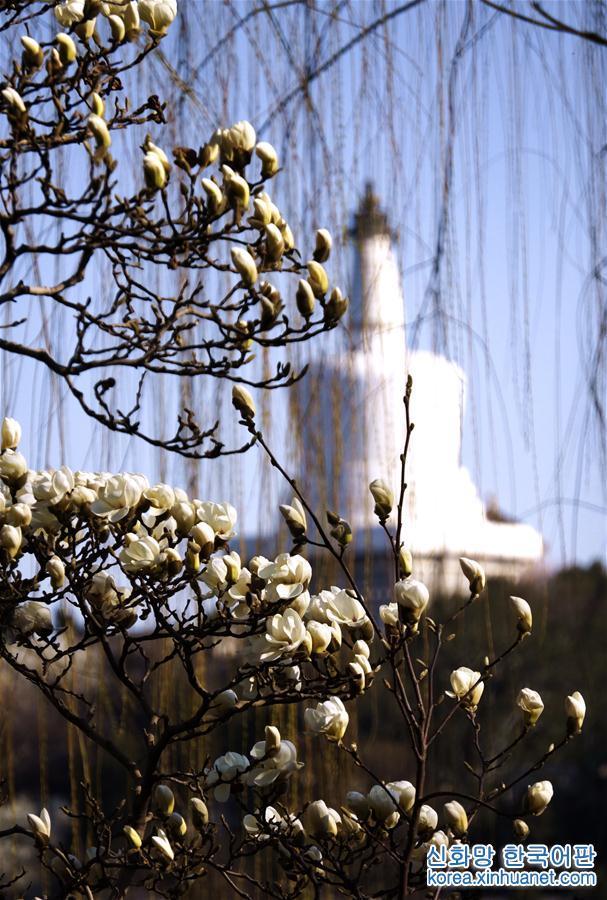 (社會)(1)北京:暖暖的春天