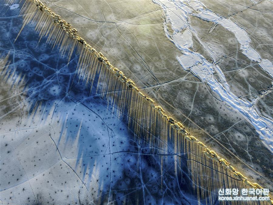 2017년 2월 9일, &amp;lsquo;선녀의 눈물&amp;rsquo;로 불리는 푸모융춰(普莫雍錯)가 얼음 호수로 변했다. 시짱 산난(山南)시 랑카쯔(浪卡子)현 두이와(堆瓦)촌 유목민 농장의 양떼들이 얼음 호수에 긴 그림자를 드리우고 있다. [촬영/신화사 기자 푸부자시(普布扎西)]<br/>