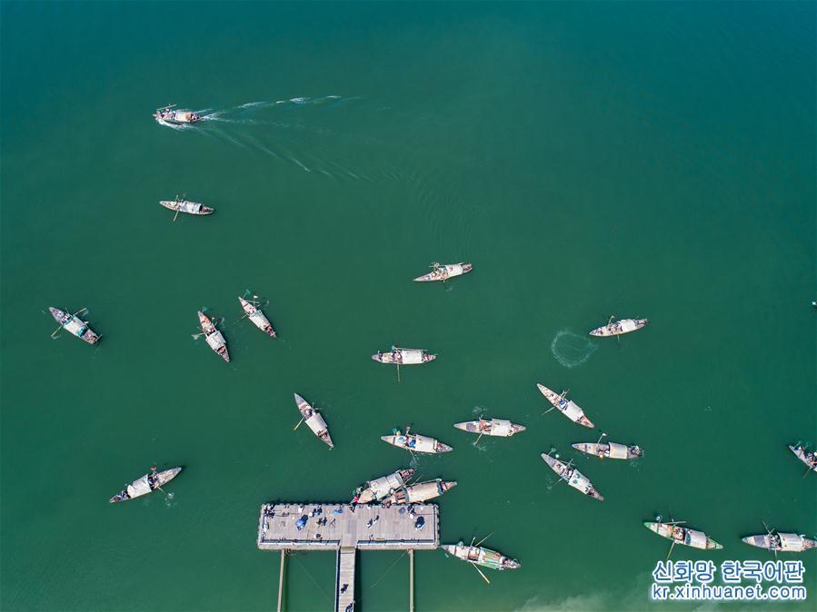 9월18일, 저장성 항저우시 푸양구 양커우진 둥쯔관촌에서 풍어를 기원하는 &amp;lsquo;민물어류 대회(江鮮大會)&amp;rsquo;가 시작됐다. 수십 척의 작은 어선들이 일제히 푸춘강을 향해 달리면서 추분 전 민물어류 잡기의 서막을 열었다. 아름다운 농촌 건설이 추진됨에 따라 둥쯔관촌은 흰 벽, 검은 기와의 전통적인 강남 민가 건설에 힘쓰는 한편 푸춘강의 풍부한 민물어류 자원을 기반으로 가을철에 특색 &amp;lsquo;민물어류 대회&amp;rsquo;를 개최하고 있다. 민물어류 잡기 체험, 민물어류 요리, 백선연, 농촌 작은 음악회, 시골요리 대회 등의 행사를 통해 각 지역에서 온 여행객들에게 푸춘강 어민들의 풍어의 기쁨과 천년의 역사를 자랑하는 강남 고촌의 독특한 매력을 선보여 농촌 특색 관광의 발전을 추진하고 있다.[촬영/신화사 기자 쉬위(徐昱)]<br/>