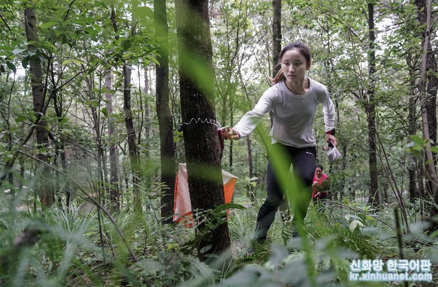 """(軍運會·圖文互動)(8)""""冠軍女孩""""的叢林穿越"""