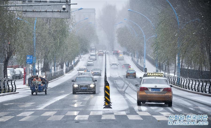 (環境)(1)吉林長春大雪紛飛