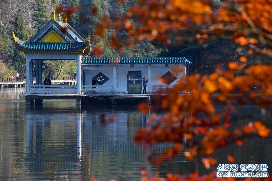 (環境)(4)江西廬山:楓葉美景迎客來