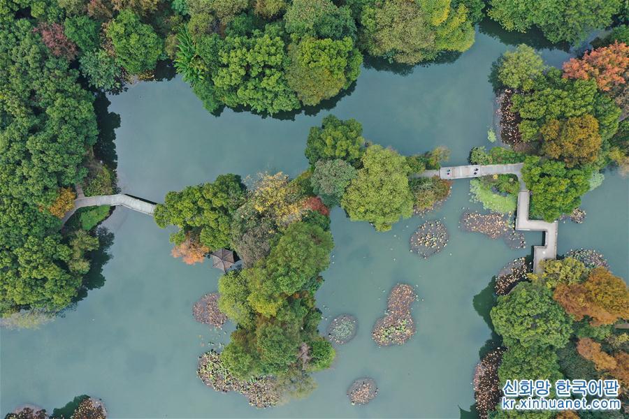 (美麗中國)(1)初冬彩西湖