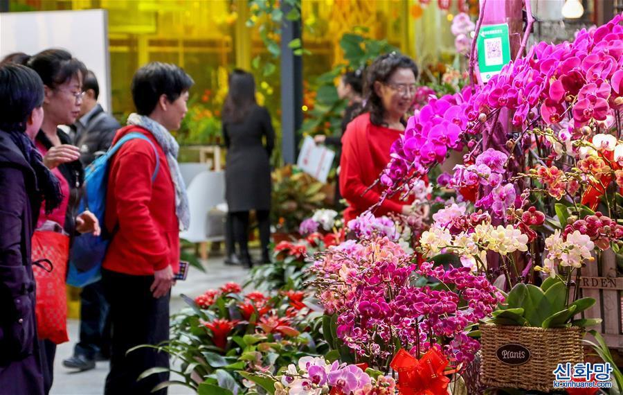 (社會)(1)北京:年宵花展迎春節
