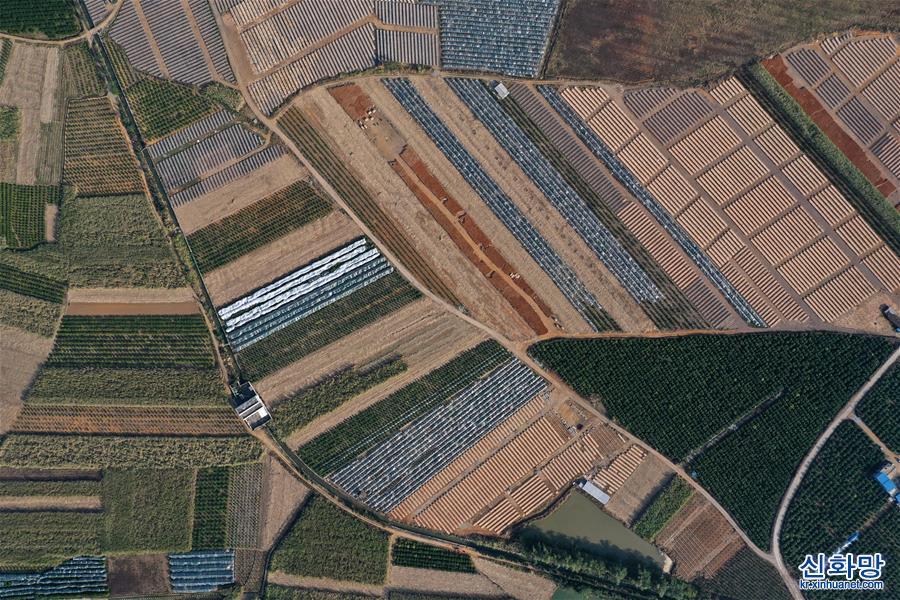 (環境)(1)廣西鹿寨:田園冬景