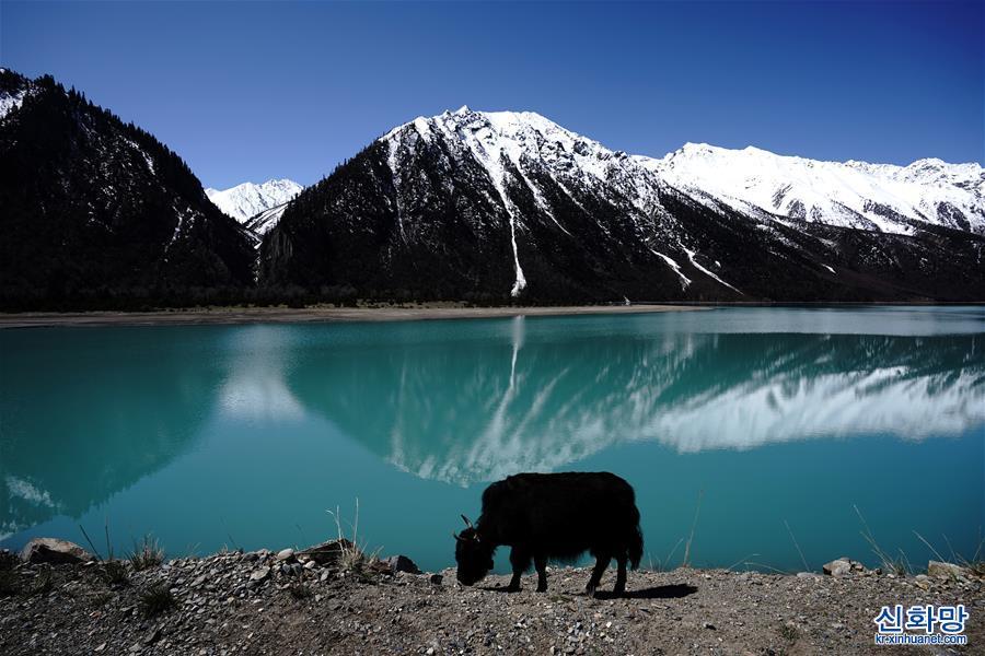 (環境)(1)美麗然烏湖