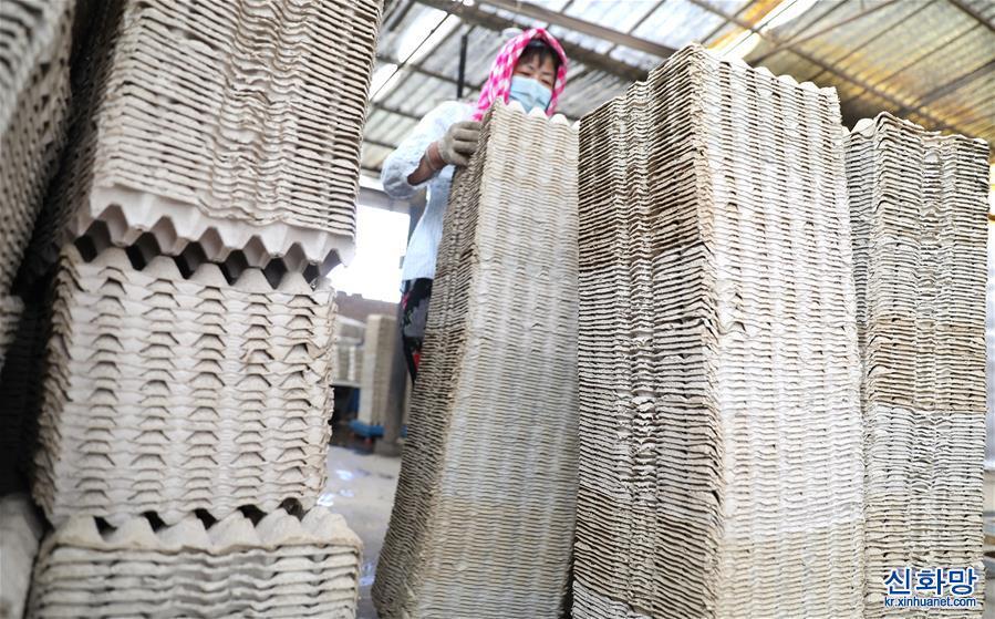 (聚焦復工復産)(5)遼寧臺安:鄉鎮企業有序復工助增收