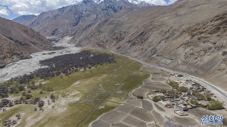 (2020珠峰高程測量)(1)珠峰自然保護區生物多樣性得到有效保護