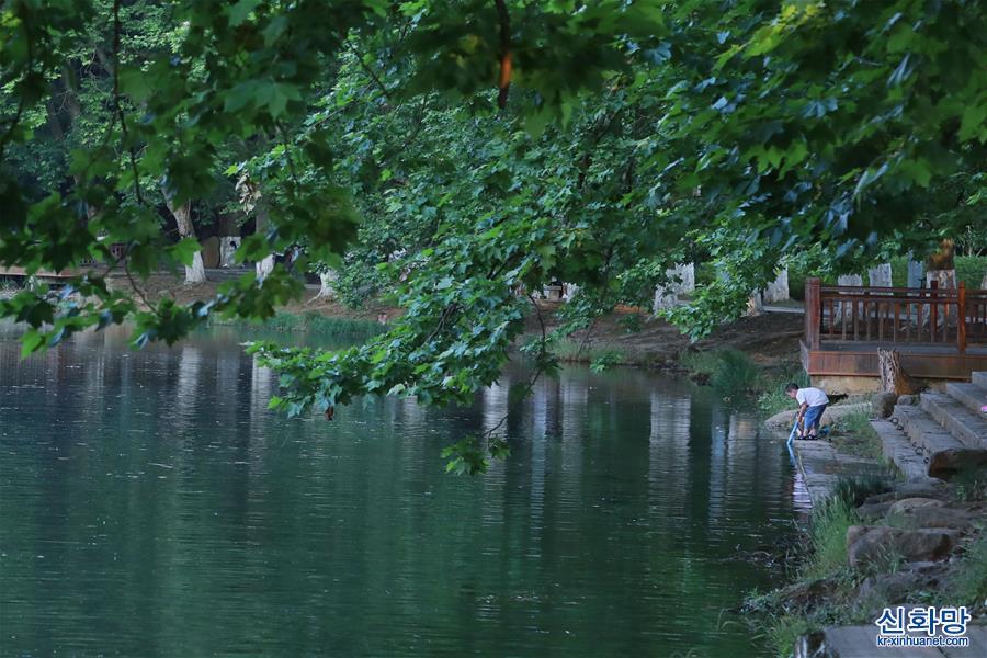 (環境)(5)貴陽:初夏濕地景如畫