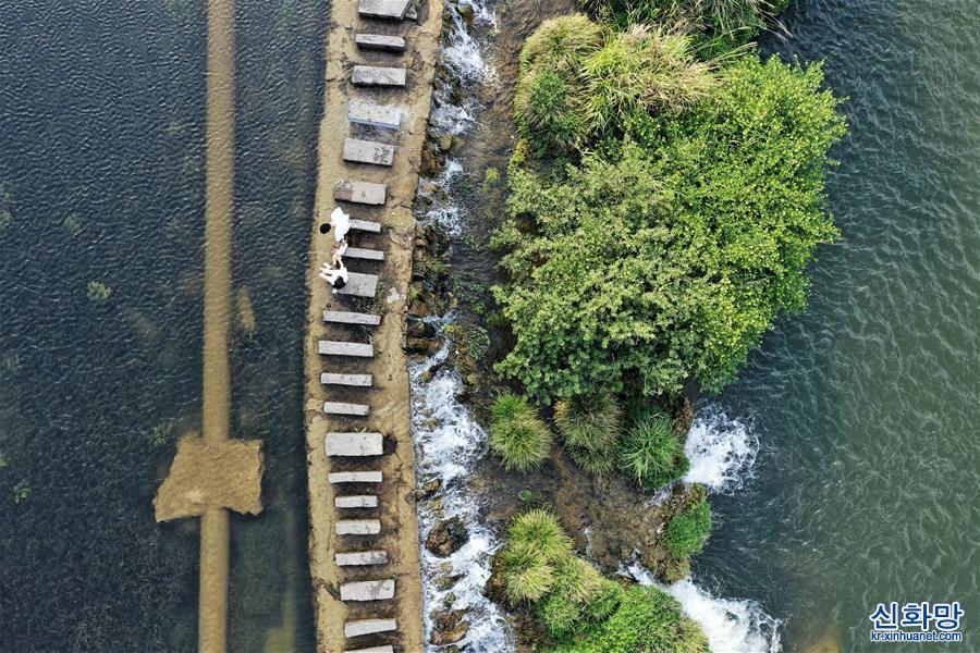 (環境)(4)貴陽:初夏濕地景如畫