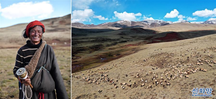(脫貧攻堅·圖片故事)(1)藏東大地脫貧影像