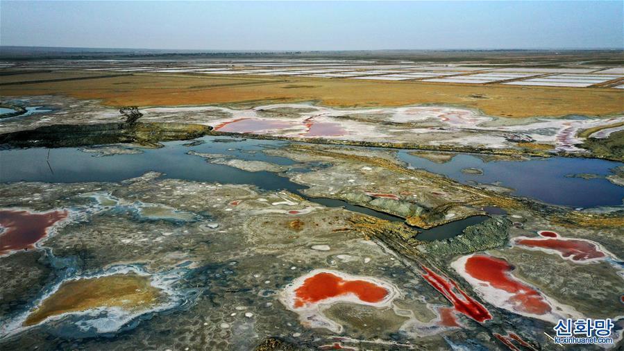 (社會)(1)千年鹽湖 絢爛塞上