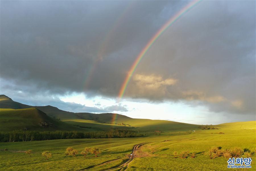 (環境)(1)阿魯科爾沁草原夏日美景
