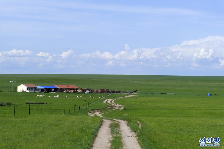 """(環境)(1)內蒙古""""十三五"""":美麗發展互惠雙贏"""