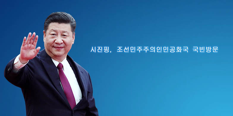 시진핑 주석, 조선민주주의인민공화국 국빈방문