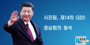 시진핑, 제14차 G20 정상회의 참석