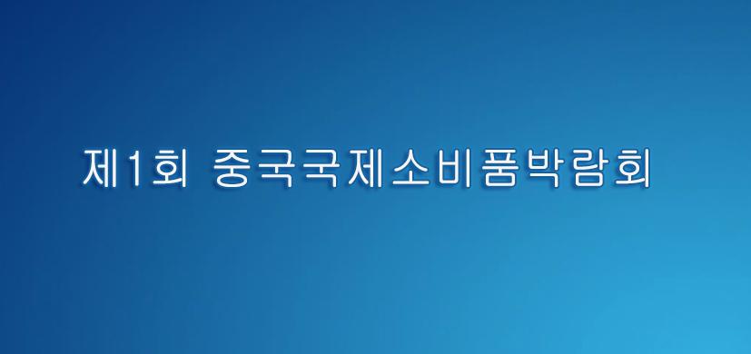 제1회 중국국제소비품박람회