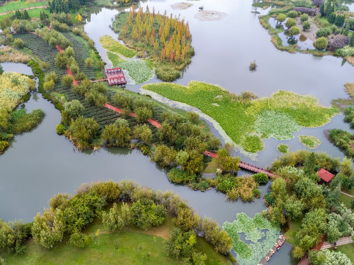 'COP15' 야외 전시 프로젝트로 무료 개방된 中 바오펑 습지