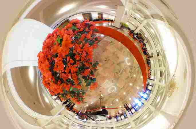 2016양회: 360도 전경으로 인민대회당의 봄꽃을 둘러봐