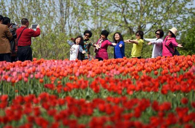 베이징, 꽃바다속을 거닐다