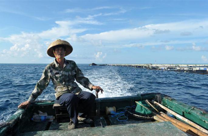 열대어류를 양식하는 난사 메이지자오 어민