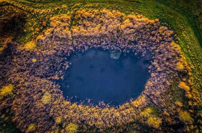 공중 촬영, 덴마크 삼림의 놀라운 '모습'