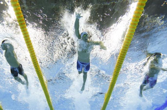 [리우 올림픽] 수영-푸른 물위의 스타들