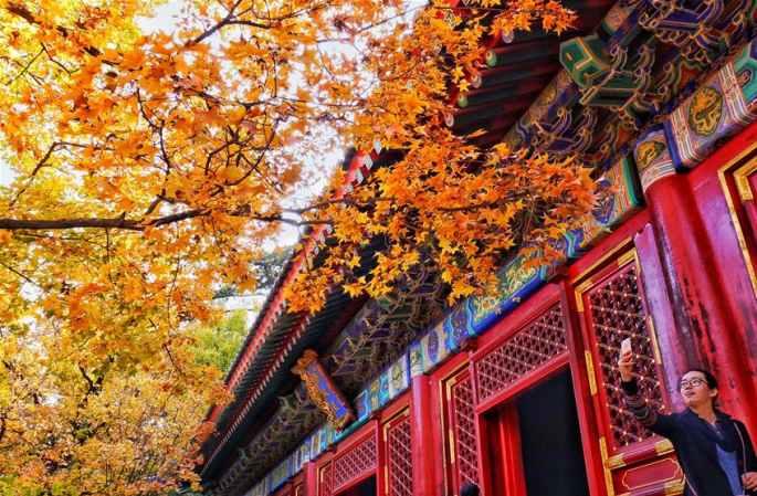 베이징, 단풍으로 관광객 발길 이어져