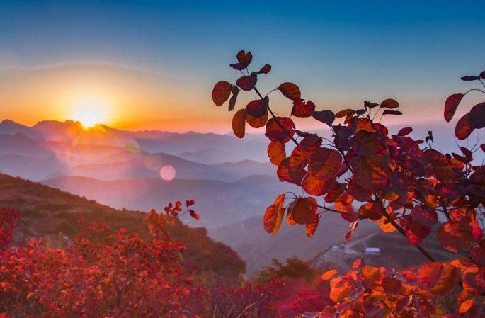 드론으로 촬영한 숭산의 단풍, '가을동화' 분위기