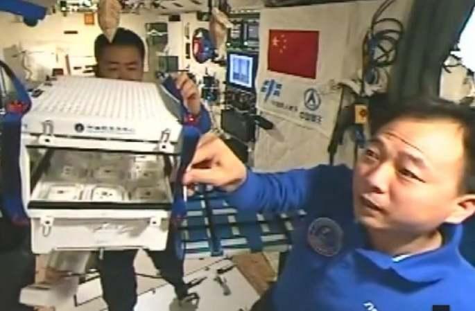 [TV] 중국인 최초로 우주서 '채소농부'변신, 일부 재배장치 3D 프린터로 완성