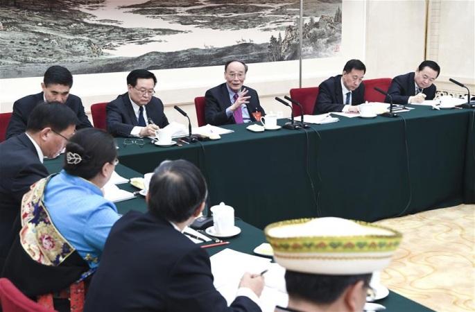 왕치산, 칭하이 대표단 심의에 참가