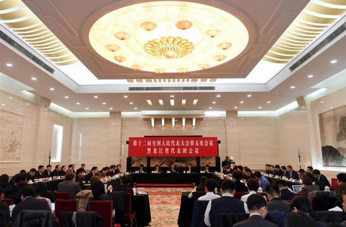 헤이룽장 대표단 전체회의 언론에 개방