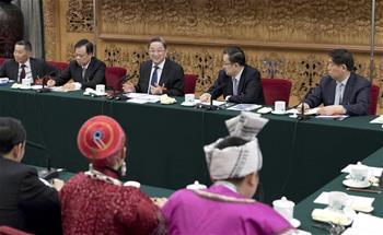 위정성, 구이저우 대표단 심의에 참가