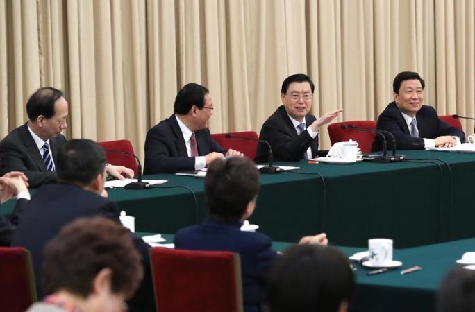 장더장, 장쑤 대표단 심의에 참가