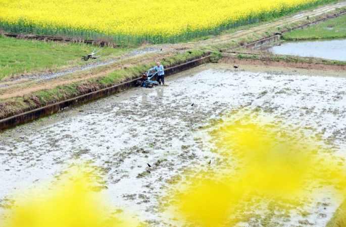 봄기운에 농사일 바빠