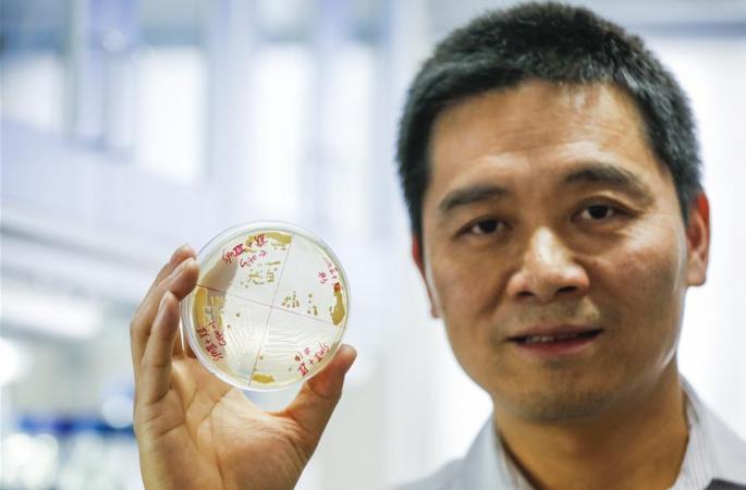 중국 과학자 화학물질 이용해 완전한 활성염색체 합성