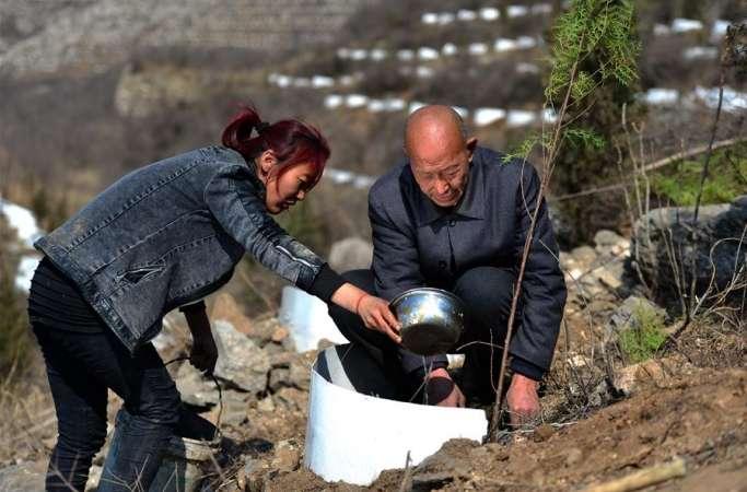'육림군장' 하오징샹: 황량한 산에 나무 심는 숲지기