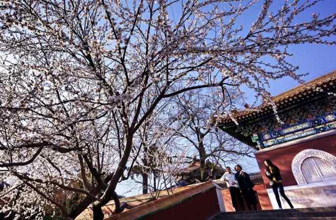 봄날의 베이징