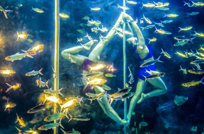 푸저우: 러시아 미녀 물속에서 폴 댄스, 고난이도 동작으로 관람객 칭찬 받아