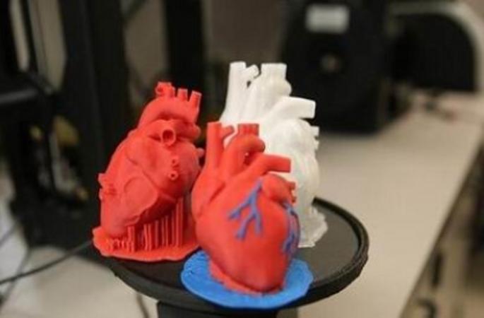 3D 프린팅으로 제조한 세계 첫 유연성 심장 탄생